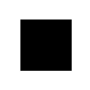 icon supply chain