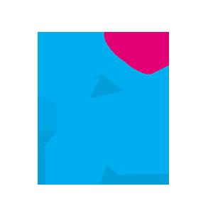 icon sports